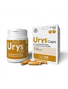 Innovet Urys Caps 30...